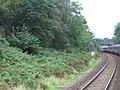 Doublebois railway station (site), Cornwall (geograph 5191057).jpg