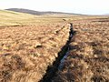 Drainage channel on Lune Head Moss - geograph.org.uk - 669508.jpg