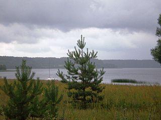Ežeras Dringis.Foto:Hugo.arg