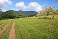 Drumul spre Cetatea Trascaului.jpg