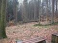 Dscn3650 - panoramio.jpg