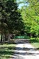 Dubechne Starovyzhivskyi Volynska-Dubechnivskyi park architecture monument-road to entrance.jpg