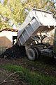 Dump trucks purchases coal.JPG