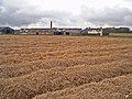 Earnhill Farm - geograph.org.uk - 264635.jpg