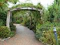 Eden Project Pathway (9757133661).jpg