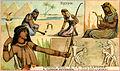 Egypte (14668157124).jpg