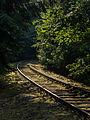 Eisenbahnlinie-Saalestauseen-8132392.jpg