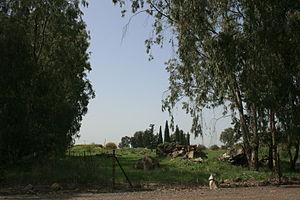Al-'Al - Ruins of Al-'Al