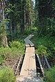 Emerald Lake IMG 5129.JPG