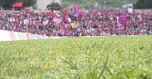 A close-up of a grassed football pitch