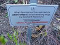 Erica margaritacea sign.JPG