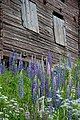 Ersk-Matsgården - KMB - 16001000299724.jpg