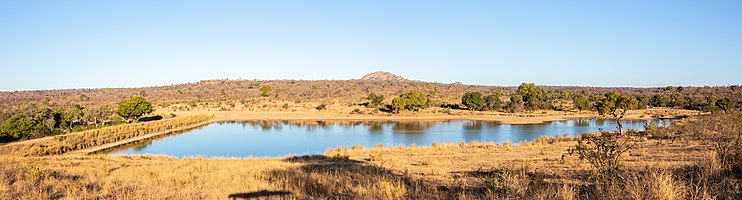Panoramic view of the watering hole in the vicinity of Pretoriuskop in the southwestern Kruger National Park, Mpumalanga, South Africa.