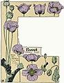 Etude de la plante - p.118 fig.157 - Pavot.jpg