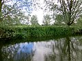 Evening on the river - June 2013 - panoramio.jpg