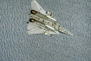 F-14A VF-24 Sparrows and Sidewinders 4.JPEG