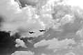 F6Fs and Clouds (6758948389).jpg