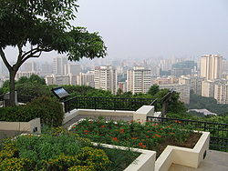feecha - things to do in Mount Faber