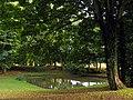 Faccombe Village Pond - geograph.org.uk - 62371.jpg