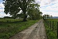 Farm Track - geograph.org.uk - 433640.jpg