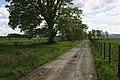 Farm Track - geograph.org.uk - 433640.jpg