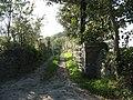 Farm track to Tyddyn Watcyn - geograph.org.uk - 992846.jpg
