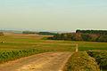 Feldweg Nähe Wirberg (Landkreis Gießen).jpg