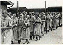 Female prisoners at Birkenau.jpg