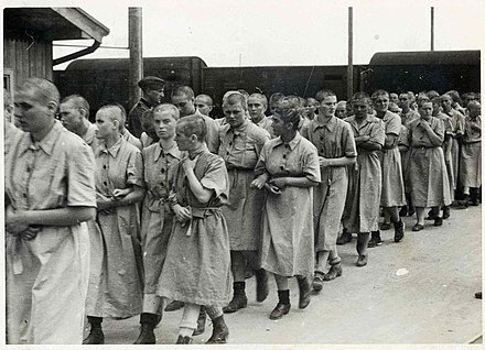 Women in Auschwitz II, May 1944 Female prisoners at Birkenau.jpg