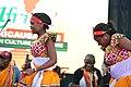 FestAfrica 2017 (36864671974).jpg