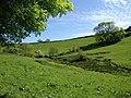 Field below Brownstone - geograph.org.uk - 812574.jpg