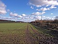 Field beside the A8 - geograph.org.uk - 1701784.jpg