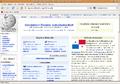 Firefox20ubuntuwiki.png