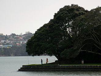 Sunnyhills - The walkway in Sunnyhills Pakuranga. Sanctuary Point where many fisherman like to go.