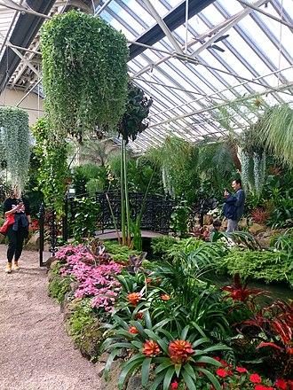 Fitzroy Gardens - Fitzroy Gardens conservatory