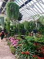 Fitzroy Conservatory.jpg