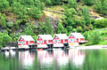 Fjordhäiser.jpg