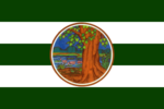 Flag Phichit Province.png
