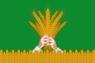 Flag of Kiknursky rayon.png