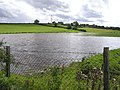 Flooded ground, Curly - geograph.org.uk - 1457909.jpg