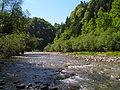 Flusslandschaft sense kantonbern schweiz.jpg