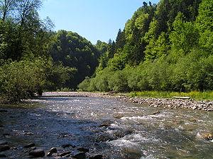 Flusslandschaft Schweiz