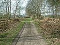 Footpath from Maxstoke Golf Course - geograph.org.uk - 390958.jpg