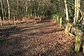 Footpath junction near Merrist Wood golf course - geograph.org.uk - 1707073.jpg