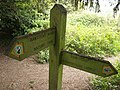 Footpath sign, Chipstead Downs - geograph.org.uk - 583771.jpg