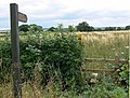 Footpath to Sibson - geograph.org.uk - 920803.jpg