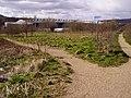 Footpaths across open land near Ewood Park - geograph.org.uk - 1285192.jpg