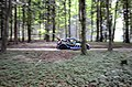 Ford Fiesta R5 (moments before hitting a tree) 5 (35334188040).jpg