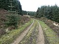 Forestry Road, Lookout Post - geograph.org.uk - 413670.jpg