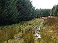 Forestry track, Cambushinnie Hill - geograph.org.uk - 625867.jpg
